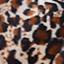 leoparde