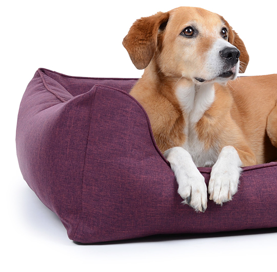 section-worldcollection-hundebett-softline-desc-540x530